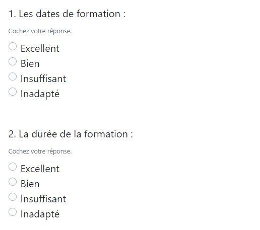 Questionnaire satisfaction stagiaire
