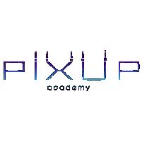 Pixup academy